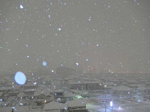Snow180122_2105a
