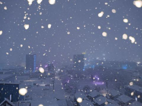 Snow180122_2105b